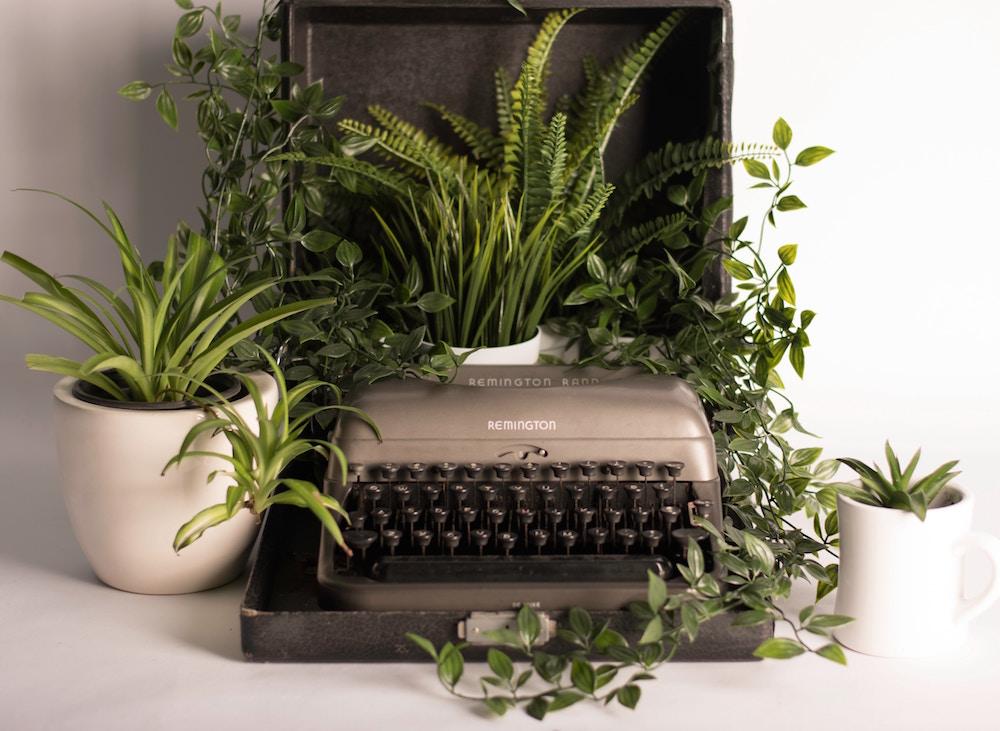 Het geheime recept van groen in je huis en kantoor