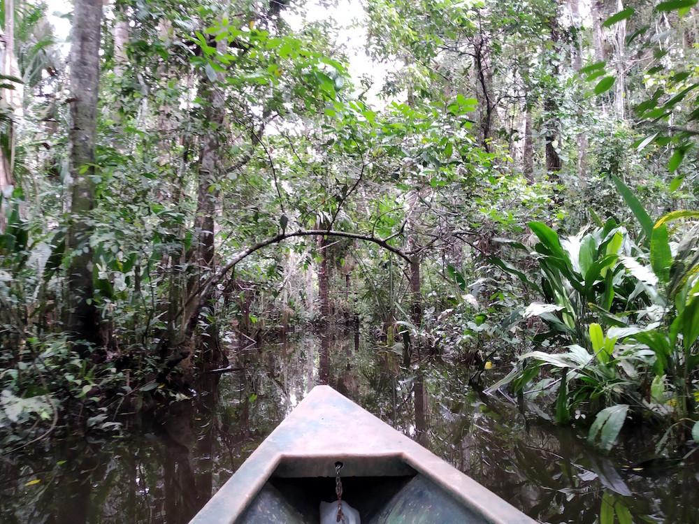 Met mijn innerlijke meisje in de jungle