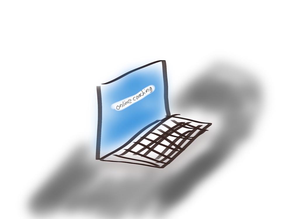 Wat biedt een online coachingprogramma?