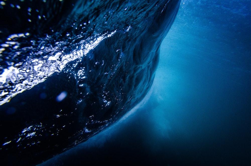 Baern: de draak van het zilte water