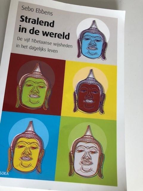 Hoe de 5 Tibetaanse wijsheden mij inspireren